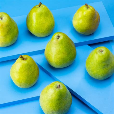 D'Anjou Pear Gift Box   Sincerely Fresh