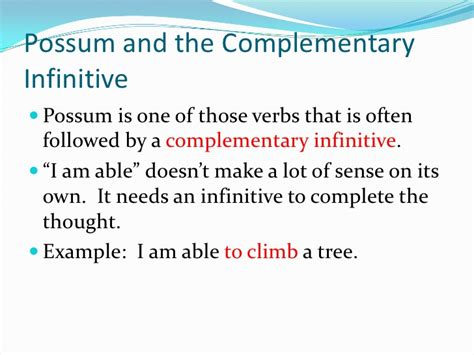 Chapter 5 Complementary Infinitives